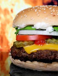 How Healthy Are Burgers From Fast Food Outlets?